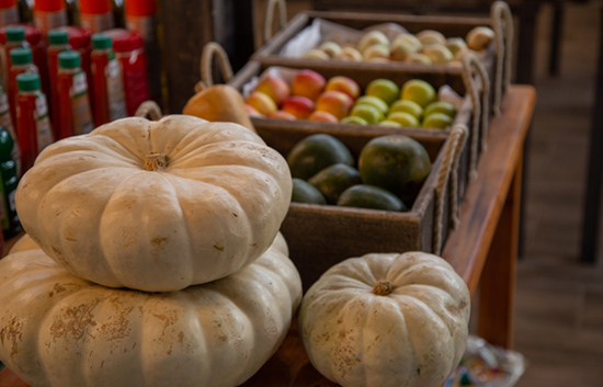 Etosha Trading Post - Home-grown fresh vegatables and seasonal fruits